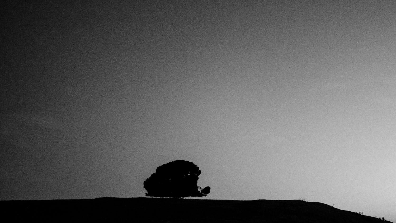 Périphérie de Tlemcen © Mehdi Drissi